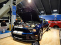 Shelby Ford Mustang with racing stripe displayed Stock Photos