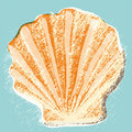 Shell background (vector) Royalty Free Stock Photography