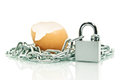 The shell of an egg covered with a chain padlock Stock Image