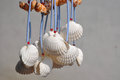 Shell handicraft hangings decorations made from shells Stock Photography