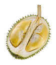 Shell husk of the prized durian fruit Stock Photography
