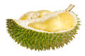 Shell husk of the prized durian fruit Royalty Free Stock Photos