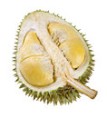 Shell husk of the prized durian fruit Royalty Free Stock Image