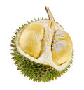 Shell husk of the prized durian fruit Royalty Free Stock Images