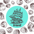 Shell illustration for your design. Royalty Free Stock Photo