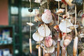 Shell at market in portovenere italy Stock Images