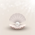 Shell with pearl inside on abstract background
