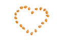 Shelled apricot kernels, put in the shape of heart Royalty Free Stock Photo