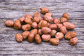 Shelled peanuts arachis hypogaea legumes used for human consumption and animal feed Royalty Free Stock Images