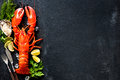 Shellfish plate of crustacean seafood with fresh lobster mussels shrimps oysters as an ocean gourmet dinner background Stock Photos