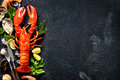 Shellfish plate of crustacean seafood with fresh lobster mussels shrimps oysters as an ocean gourmet dinner background Stock Photography