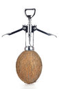 Shelling coconut wine opener white background Stock Photography