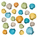 Shells background (vector) Stock Photos