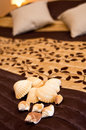 Shells on bed a brown cover Royalty Free Stock Photo