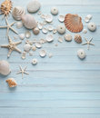 Shells Blue Wood Background