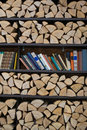 Shelves for books and firewood stacked in a pile Stock Photos