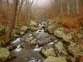 Shenandoah national park virginia robinson river rapids flow through whiteoak canyon in Stock Images