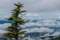 Shenandoah Valley view Royalty Free Stock Image