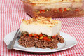 Shepards pie with a fork Royalty Free Stock Photo