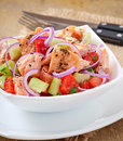Sheppard salad with norwegian salmon Royalty Free Stock Images