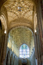 Sherborne Abbey Ceiling Royalty Free Stock Image