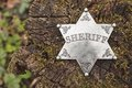 Sheriff badge on wooden background.
