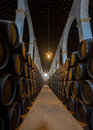 Sherry barrels in jerez bodega spain europe Royalty Free Stock Image