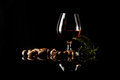 Sherry glasses over a dark background with plenty of copy space Royalty Free Stock Photo