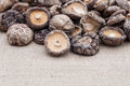Shiitake mushrooms on jute background Stock Photo