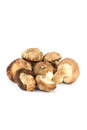 The shiitake mushrooms on the white background Stock Photo