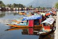 Shikara boats on dal lake with houseboats in srinagar kashmir india aug is a small boat used for transportation the Royalty Free Stock Images