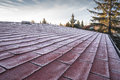 Shingles roof in frost Royalty Free Stock Photo