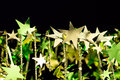 Shining golden Christmas stars on black background Royalty Free Stock Photo