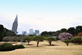 Shinjuku gyoen tokyo japan a sakura cherry blossom tree at national garden at the buildings at the background are buildings of Stock Photo