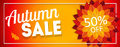 Shiny Autumn Leaves Sale Banner. Business Discount Card. Vector Illustration Royalty Free Stock Photo