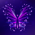 Shiny Butterfly abstract Stock Photo