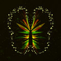 Shiny Butterfly abstract Royalty Free Stock Photo