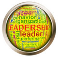 Shiny button - Leadership tags Stock Images