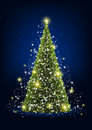 Shiny christmas tree with lights Stock Image