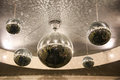 Shiny disco balls on the ceiling in the hall Stock Image