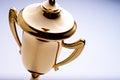 Shiny gold trophy award Royalty Free Stock Photo
