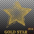 Shiny golden star, isolated on transparent background. Vector