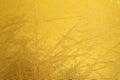 Shiny metal yellow texture background. Metallic pattern Royalty Free Stock Photo