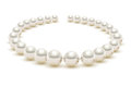 Shiny realistic Pearl necklace on white background