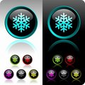 Shiny snowflake button set. Stock Images