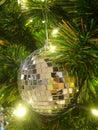Shiny Xmas ball on gree pine tree Royalty Free Stock Photo