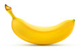 Shiny yellow banana Royalty Free Stock Photography