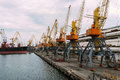 Ship in seaport bigger gantry cranes ukraine Stock Photography