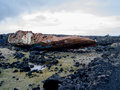 Shipwreck in raykjavik ship wreck south east of iceland Royalty Free Stock Photography