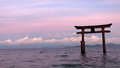 Shirahige tori in Lake Biwa in Japan Royalty Free Stock Photo